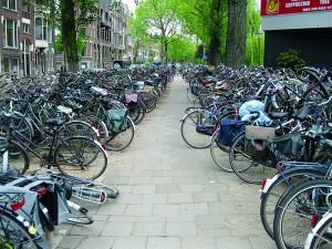 Parkszenen in Rotterdam.