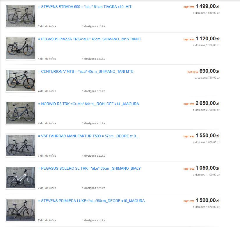 Screenshot der polnischen Internetplattform: Schon eine Woche, nachdem die Fahrräder in Berlin gestohlen werden, tauchen sie hier auf.